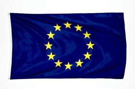Európai Uniós zászló 150x250 cm Európai Unió kültéri zászlója
